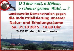 Demo_Widdern